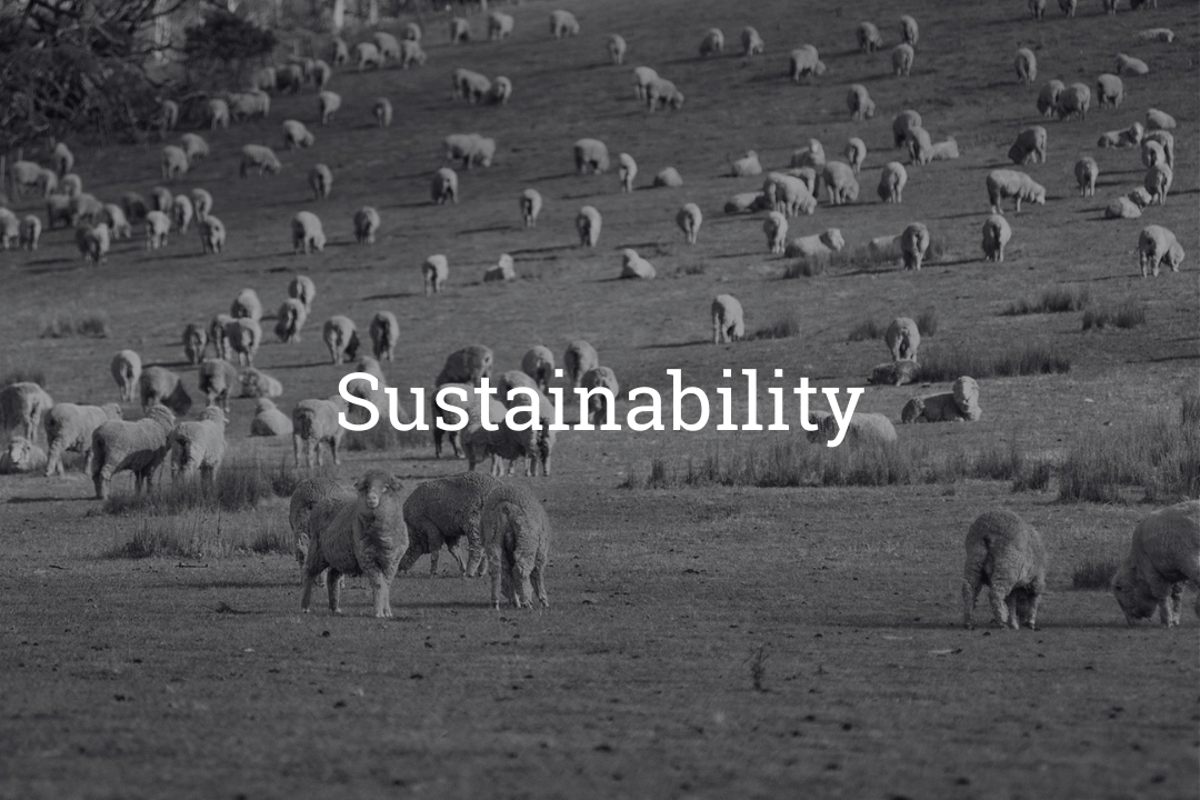 Brent Wilson's sustainable fashion industry